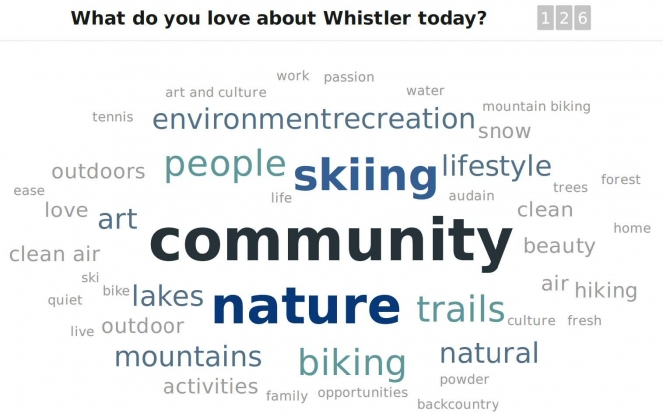 Whistler Vision word cloud image