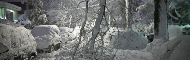 Winter downed power line