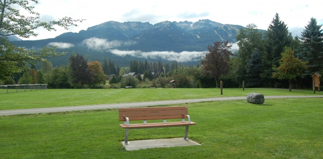 Tribute bench at Meadow Park