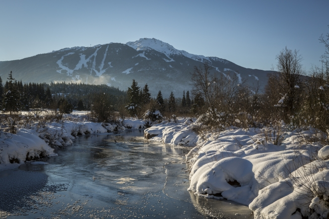 Frozen water stream in Whistler