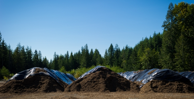 Compost facility in Whistler