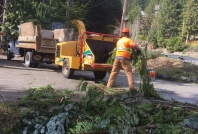 FireSmart community chipping Whistler