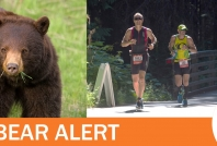 May 20, 2020- Bears reacting defensively throughout Whistler