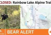 October 2, 2020- Rainbow Lake Alpine Trails closed due to defensive grizzly bear