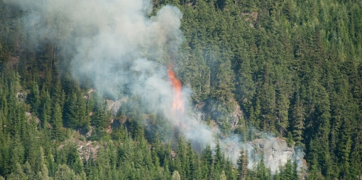 Wildfire in Whistler image