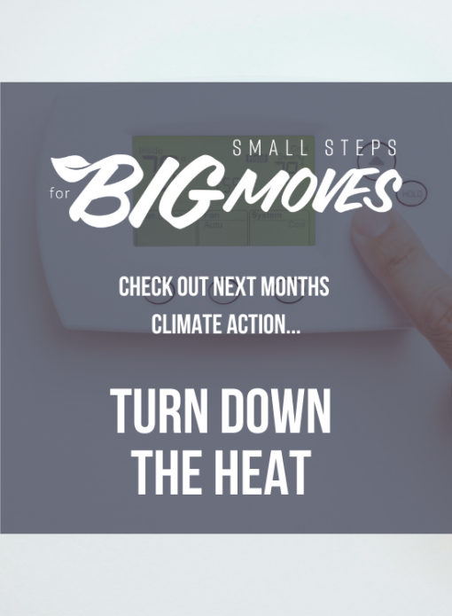 Check out next month's climate action: Turn down the heat