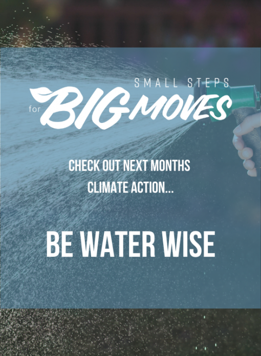 Check out next month's climate action: Be water wise