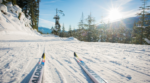 Cross country skis photo by Mike Crane/TW