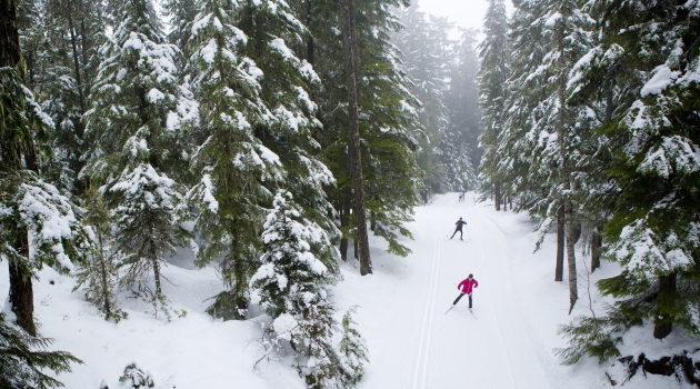 Lost Lake cross country ski and snowshoe trails image by Justa Jeskova